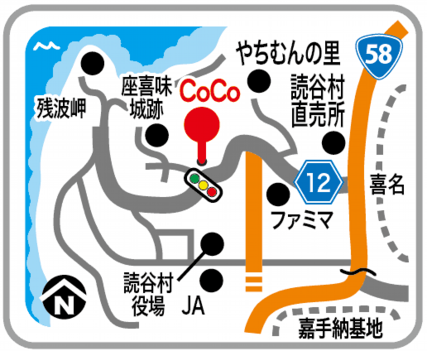accessmap-coco-2016_03.png
